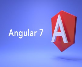 Angular 7 By Building An App